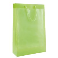 Clear bag with two windows A4