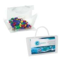 Mini clear bag carletties